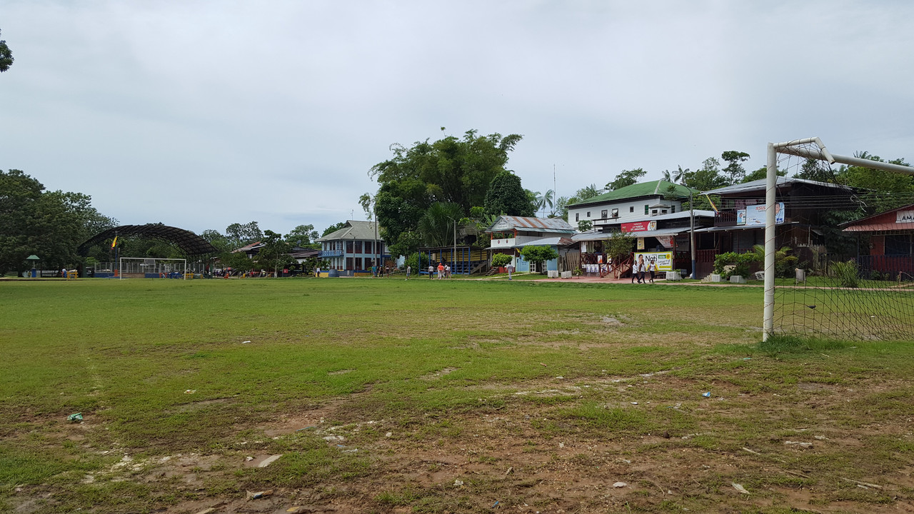 The Amazon-football-pitch-jpg