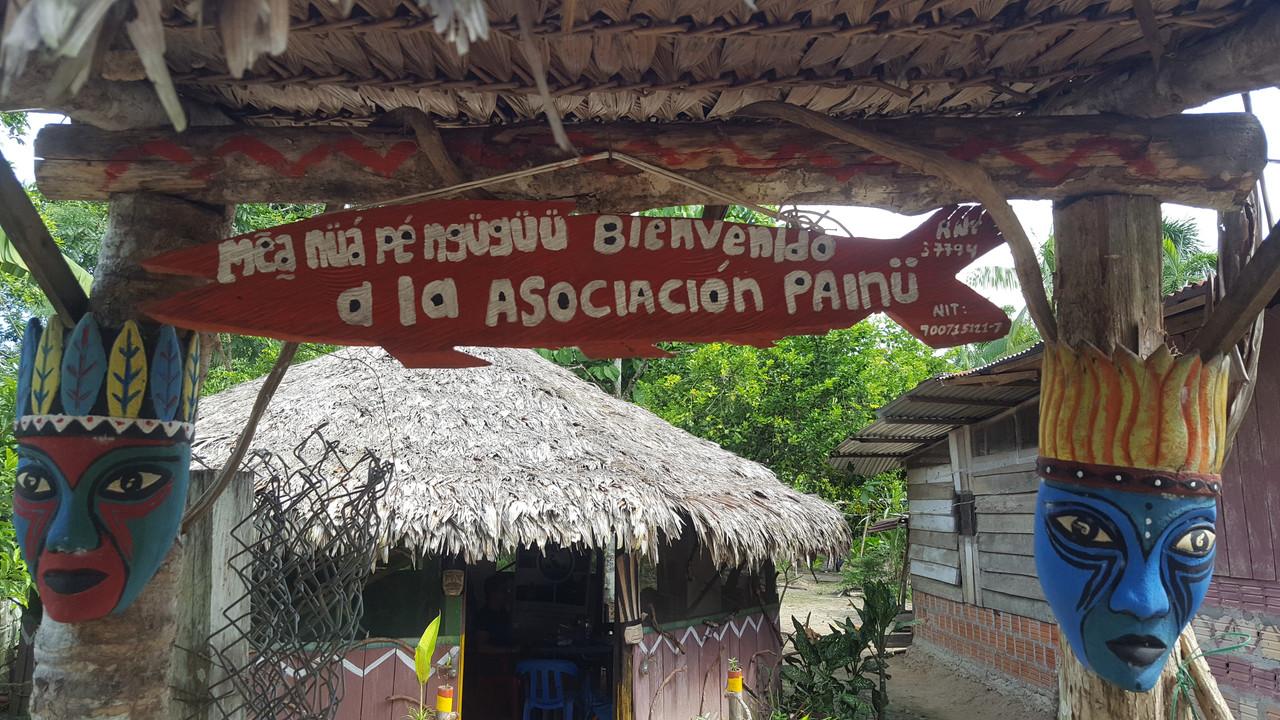 The Amazon-painu-1-jpg