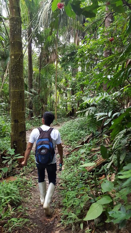 The Amazon-guide-4-jpg