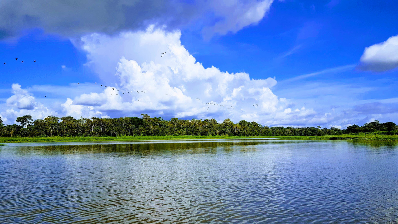 The Amazon-lake-9-jpg