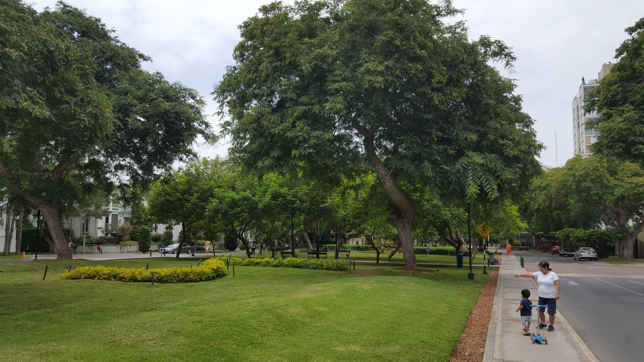 Peru: Lima, Cusco and Machu Picchu-parks-green-jpg