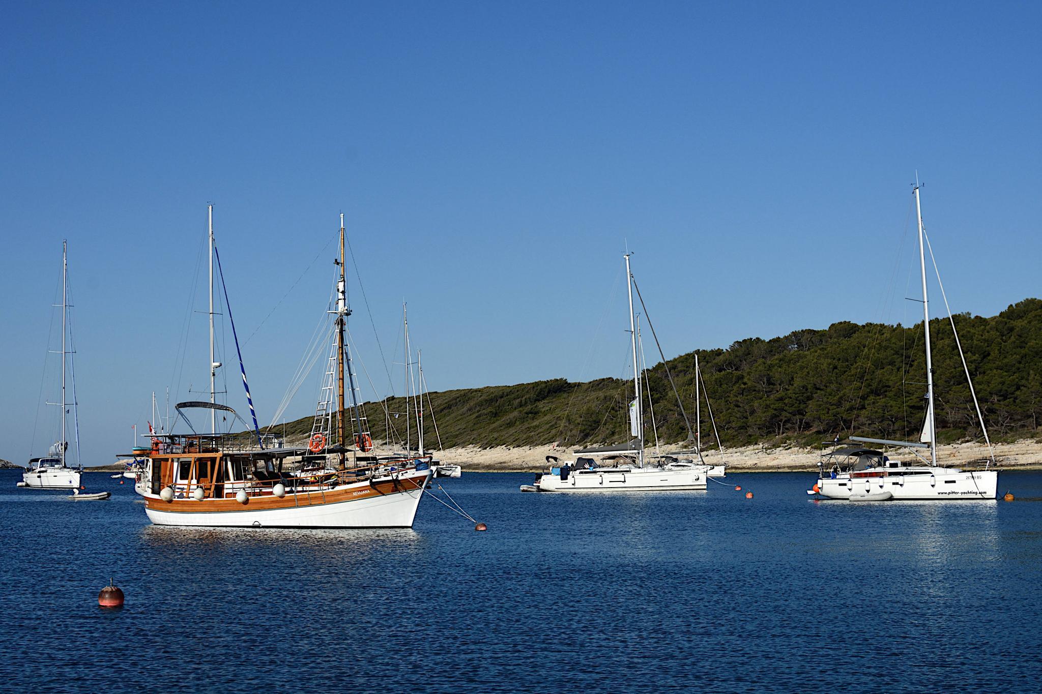 Week Sailing in Croatia-vinogradiske_2494_02-jpg