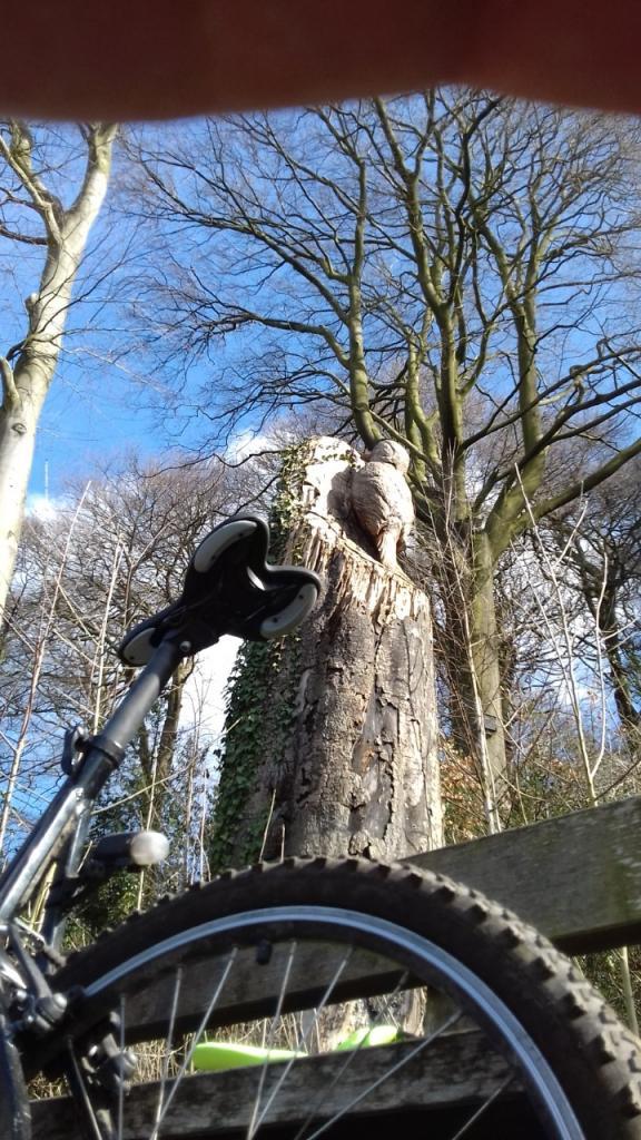 On my bike-omb202-jpg
