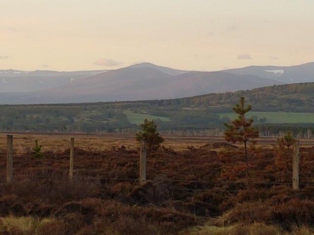 The Highlands-rsz_4rsz_20180515_050842-jpg