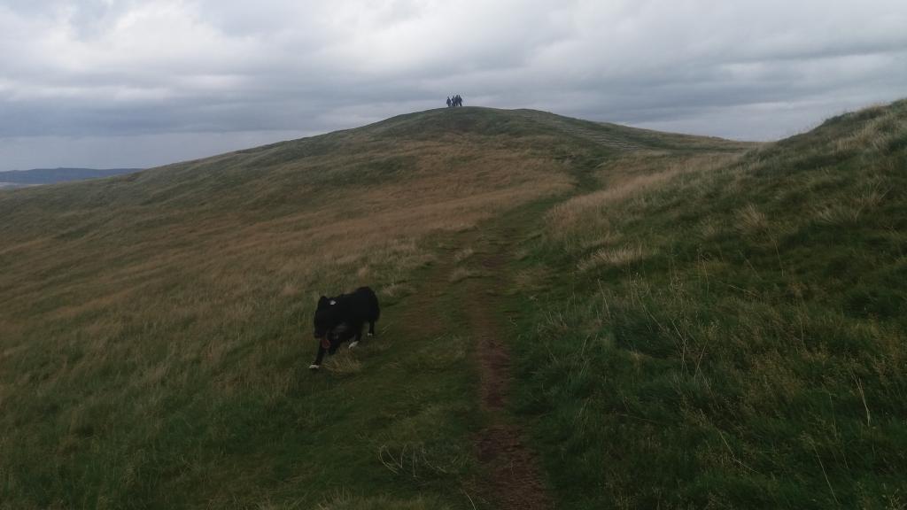 A dodgy Derbyshire Dales day with da dog .-20190904_144626-jpg