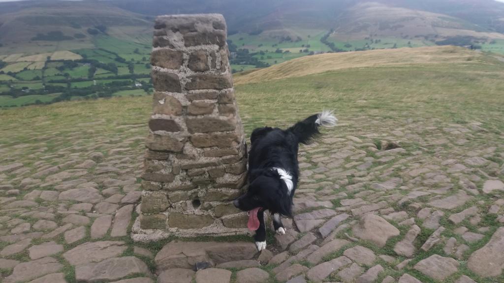 A dodgy Derbyshire Dales day with da dog .-20190904_144901-jpg