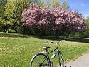 On my bike-100540366_10159326585353306_2002537091694592_o-jpg