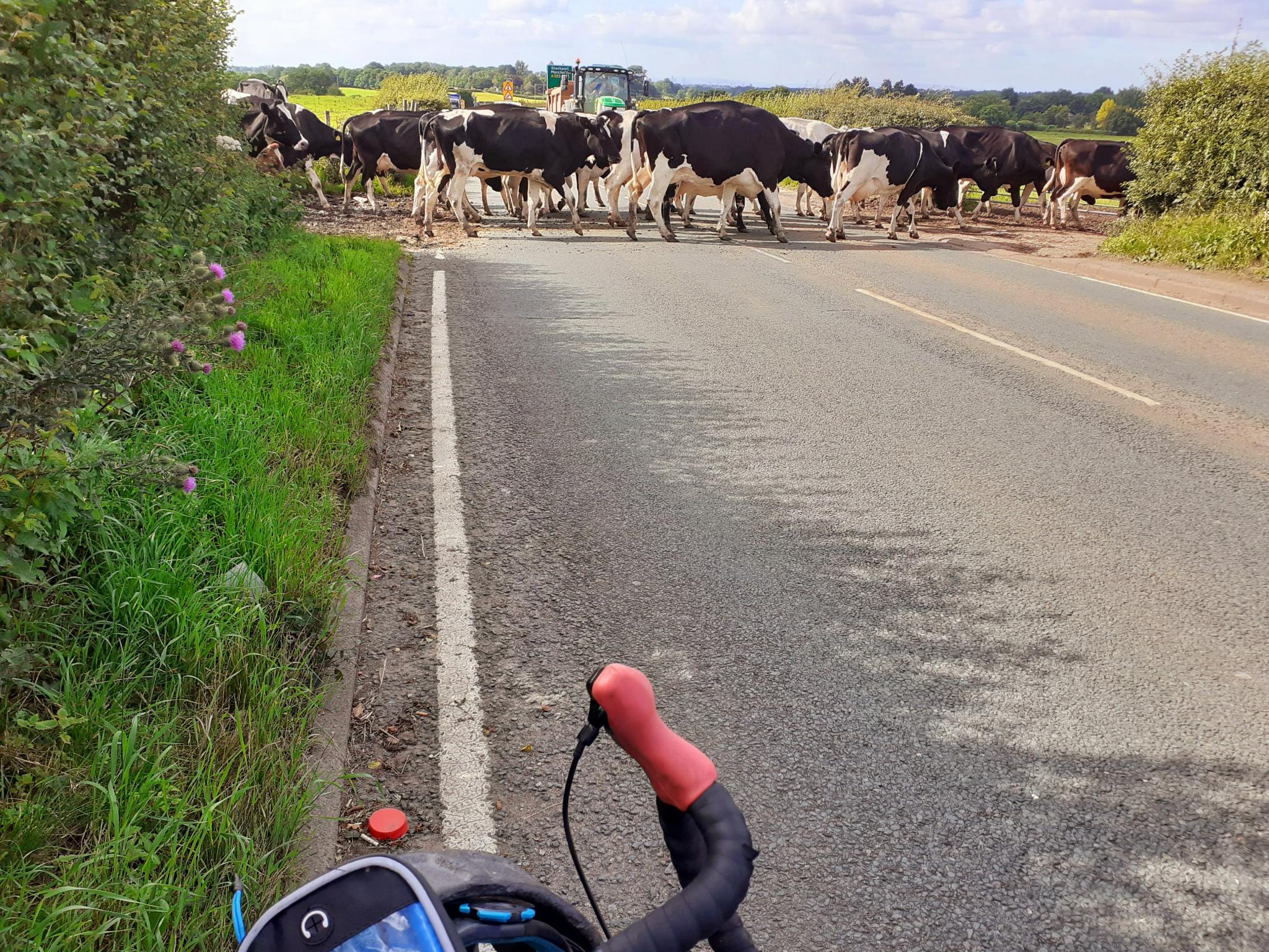 On my bike-20200706_220942-jpg