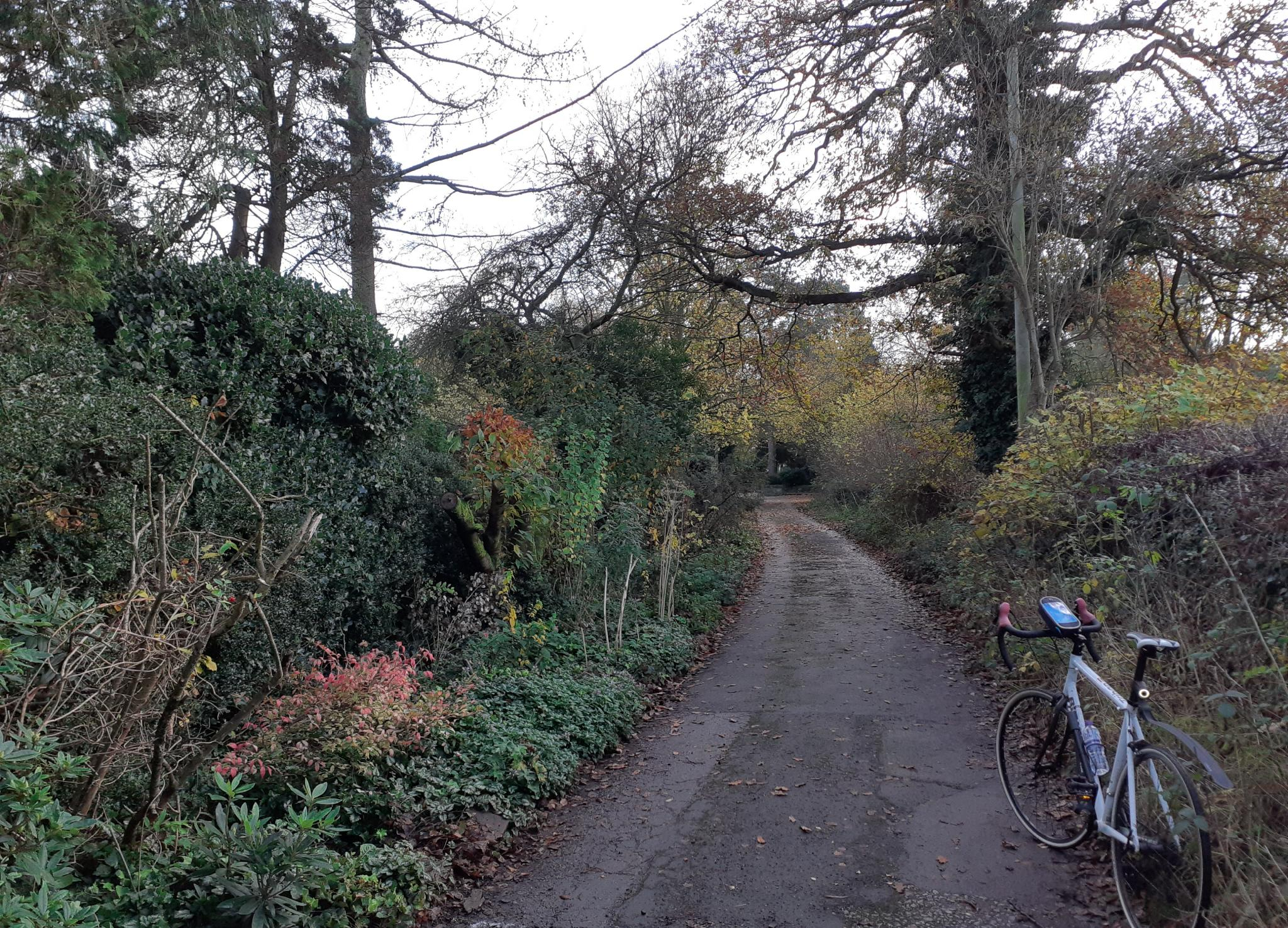 On my bike-20201109_213725-jpg