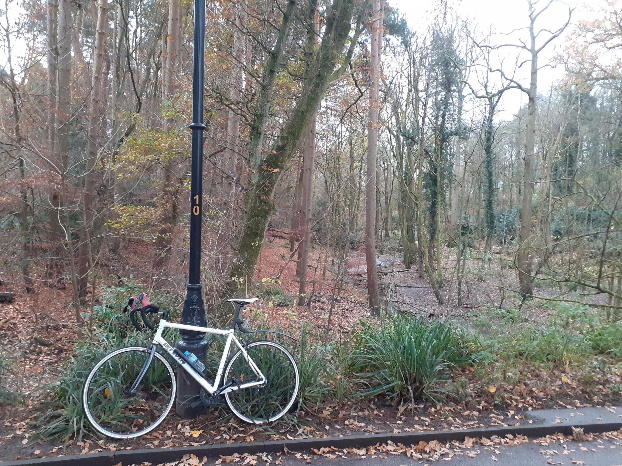 On my bike-20201117_143039-jpg