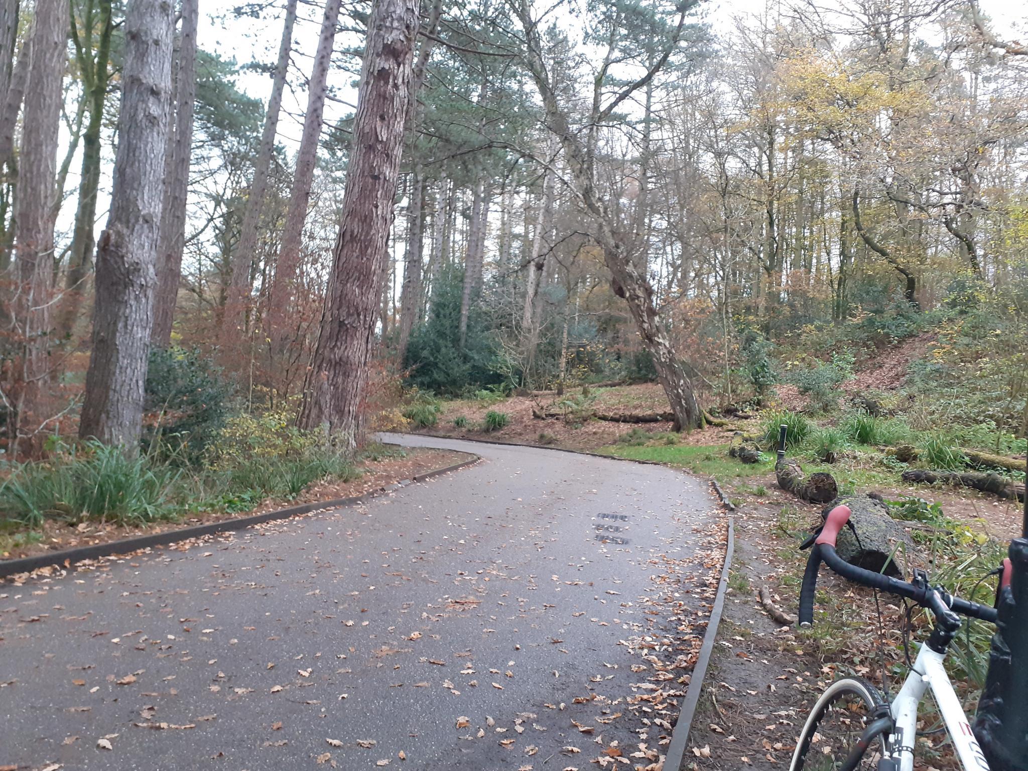 On my bike-20201117_143050-jpg