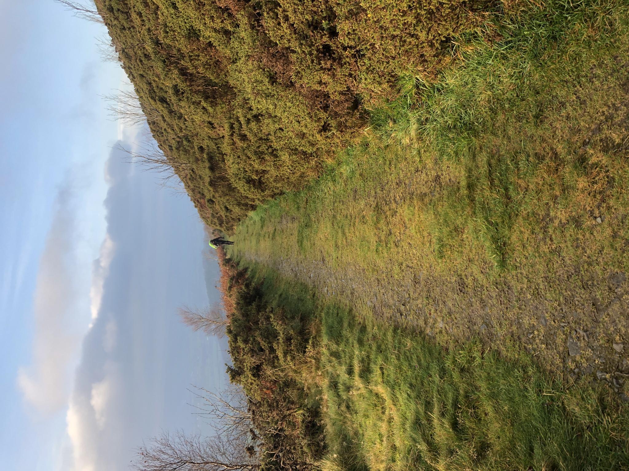 Offas Dyke in December-4ba51ed6-6c52-41b3-a508-33b1603a0715-jpg