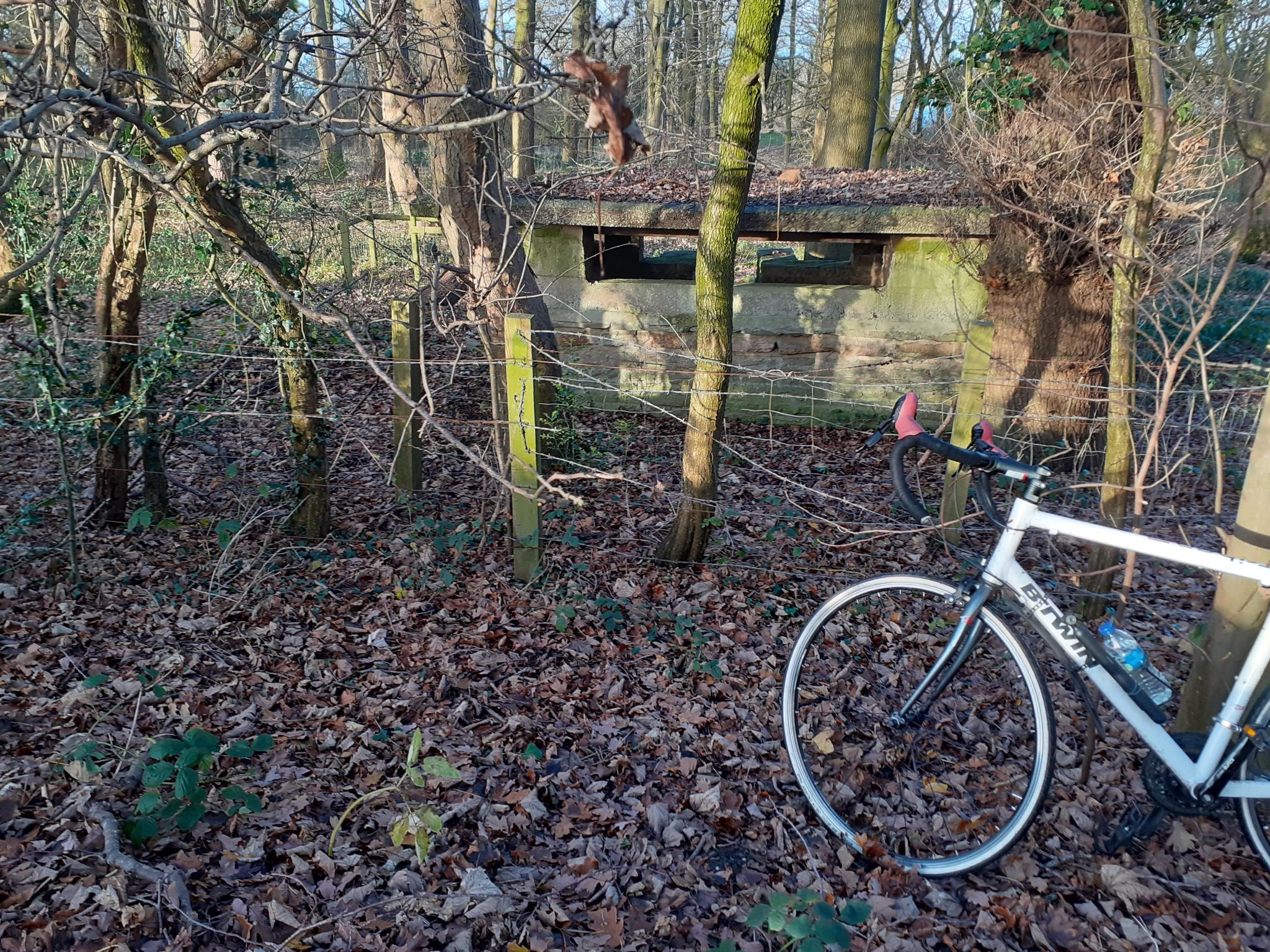 On my bike-20201219_142544-jpg