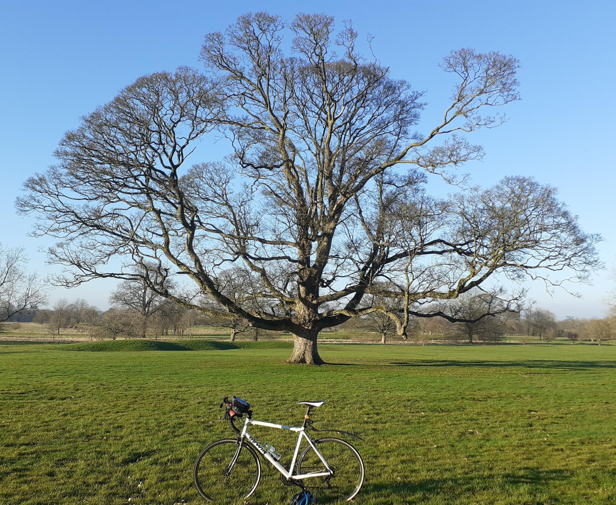 On my bike-20210301_173130-jpg
