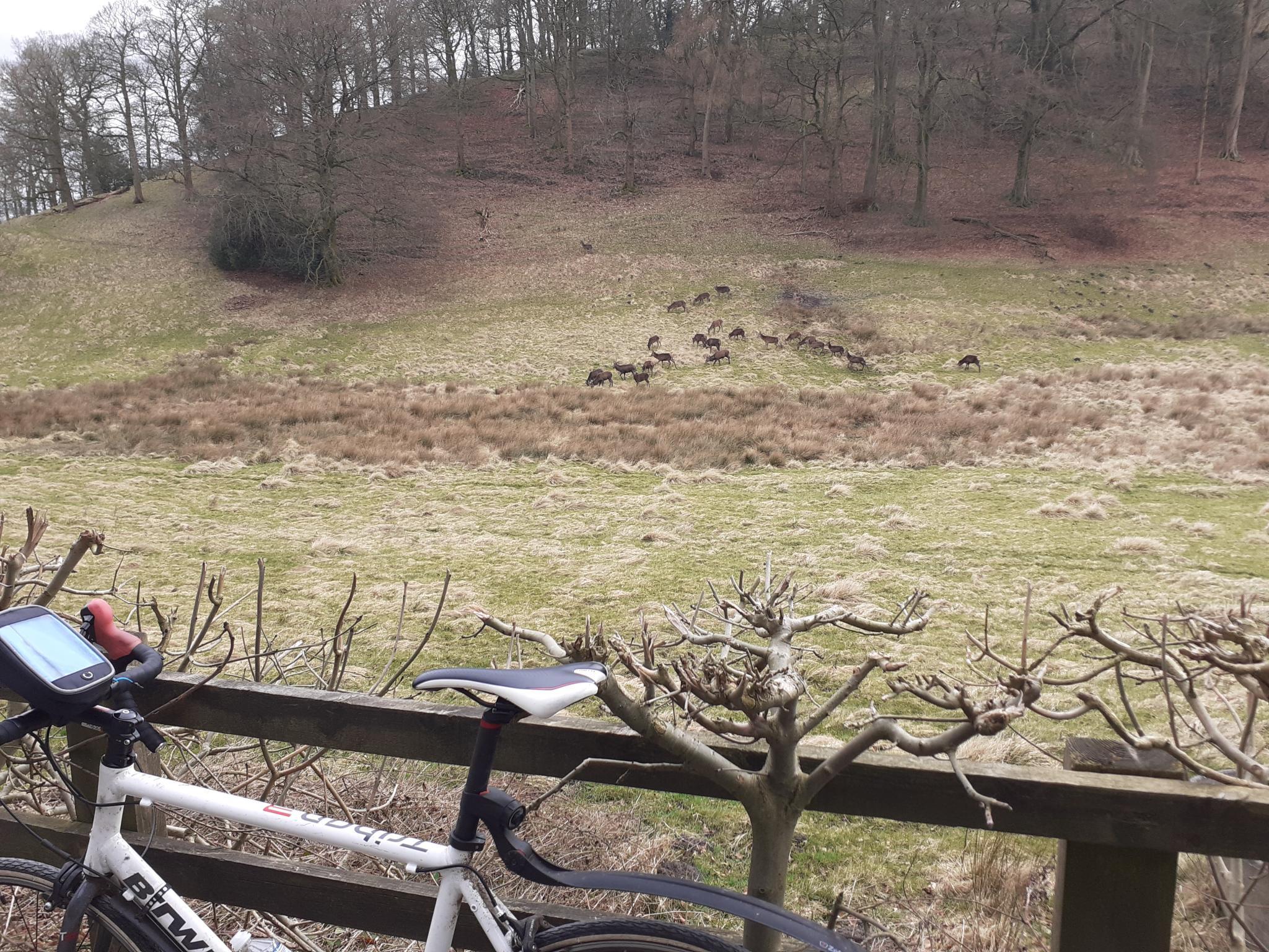 On my bike-20210309_151343-jpg