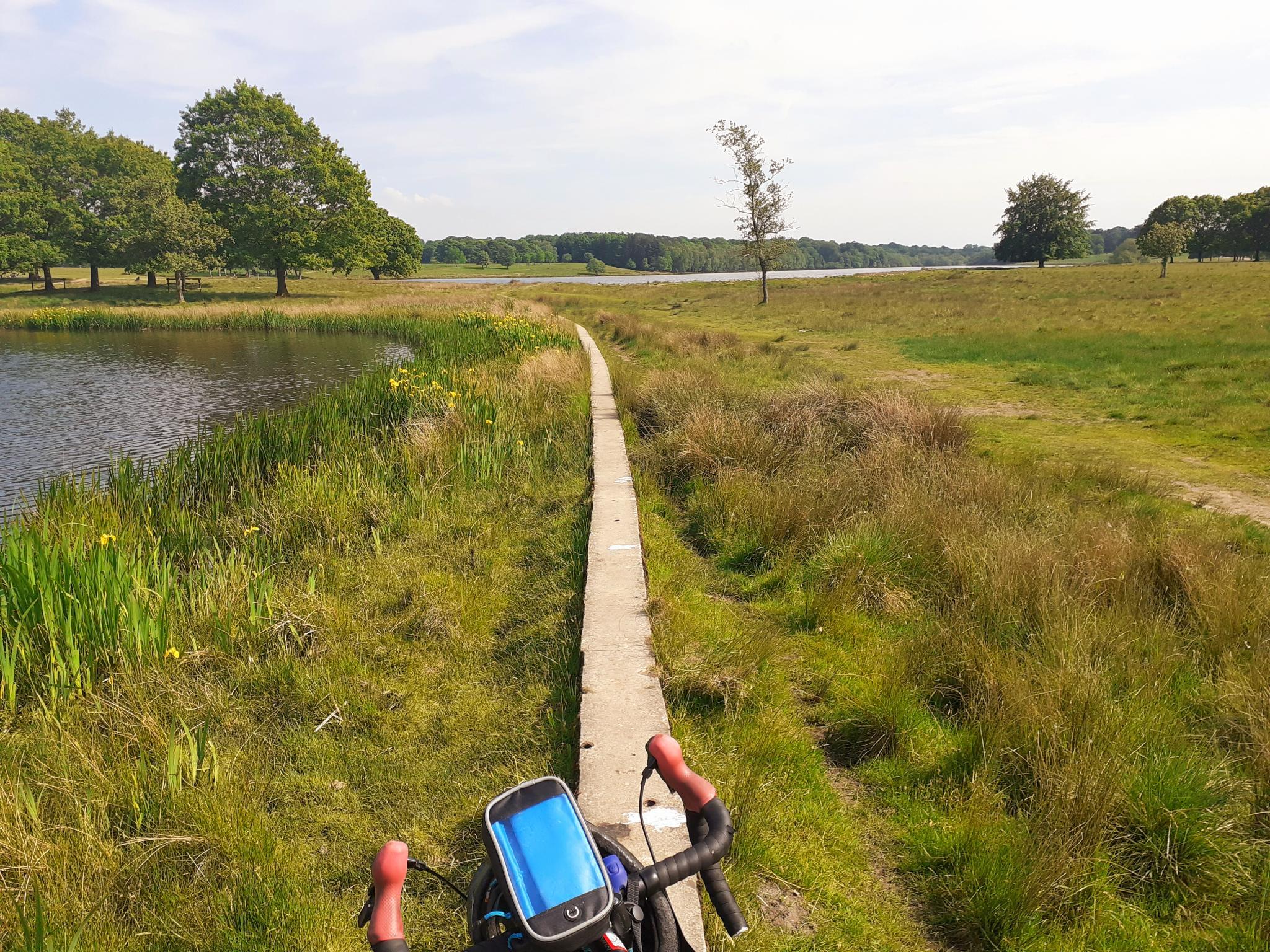 On my bike-20210603_212122-jpg