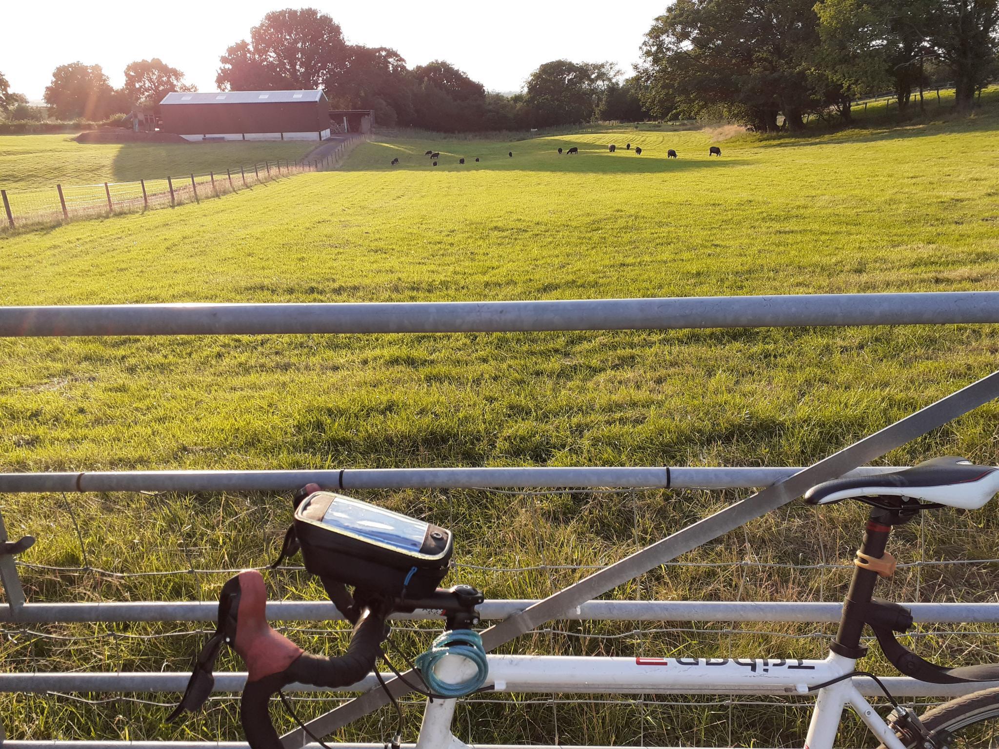 On my bike-20210802_195638-jpg