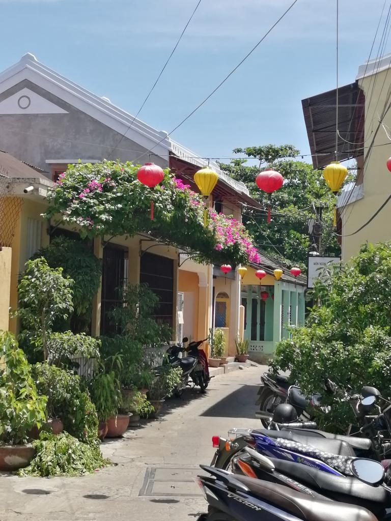Viewing Vietnam 2019-img_20190605_102838-jpg