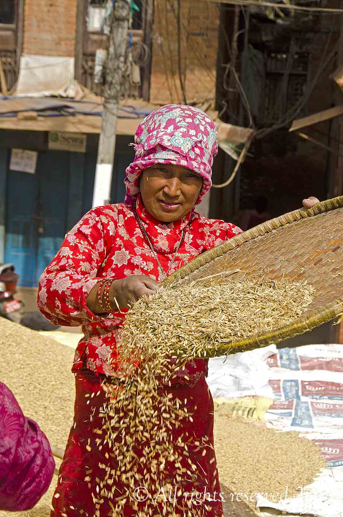 Anyone been up to Nepal  recently?-thrashing-rice-jpg